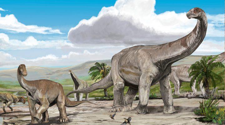 Descubren dos nuevas especies de dinosaurios herbívoros en La Rioja