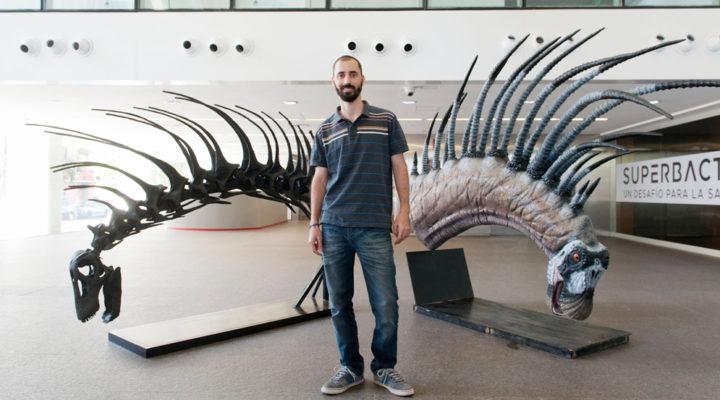 El Senado declaró de interés el hallazgo de una nueva especie de dinosaurio realizado por paleontólogos del CONICET