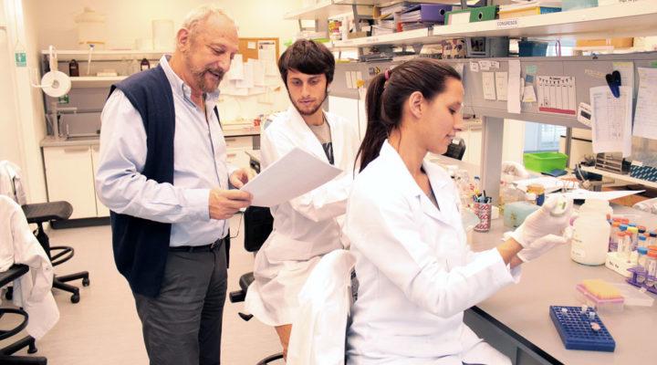 Descubren un mecanismo que interviene en los procesos de expansión del carcinoma renal