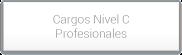 Cargos Nivel C Profesionales