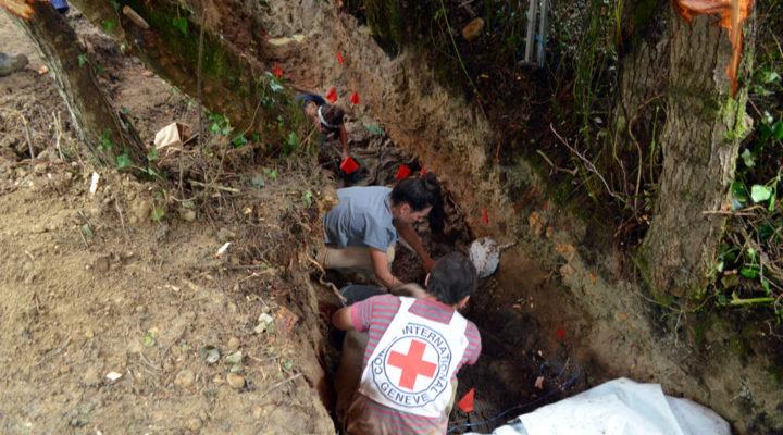 Científicos del CONICET participan en excavaciones en la región del Cáucaso