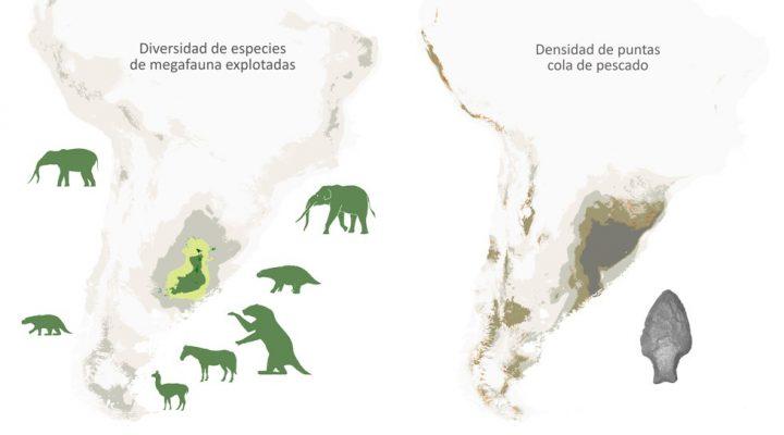Extinción de la megafauna: los seres humanos tendrían mucha más responsabilidad de lo que se creía hasta ahora