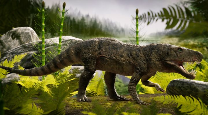 Scientists reconstruct the skeleton of an ancestor of the crocodile that lived in Argentina 225 millions of years ago