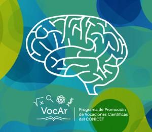 cerebro-vocar