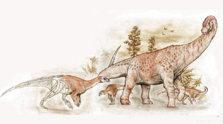 """Presentan en el MACN a """"Los dinosaurios del fin del mundo"""""""