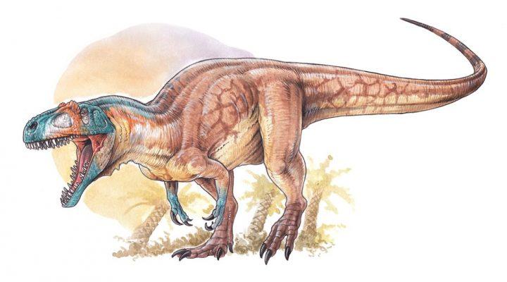 Descubren en Chubut uno de los dinosaurios carnívoros más antiguos del Jurásico
