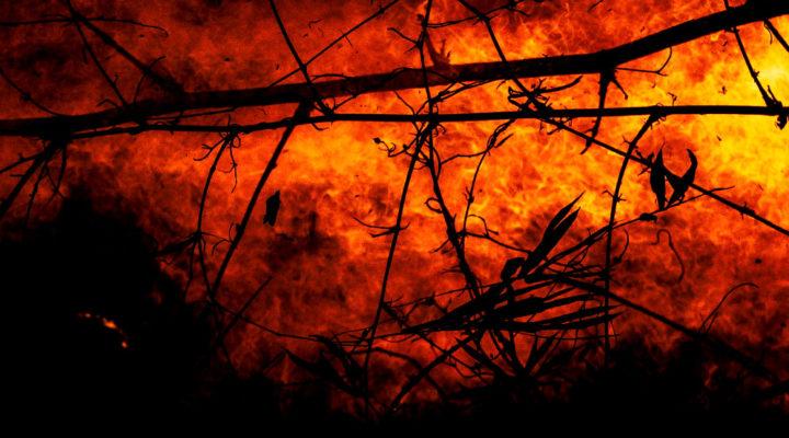 Incendios en el Amazonas… más sequía y desertificación en Argentina