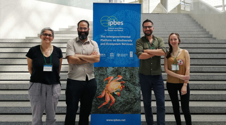CONICET scientists will represent the country in the first world report on invasive alien species