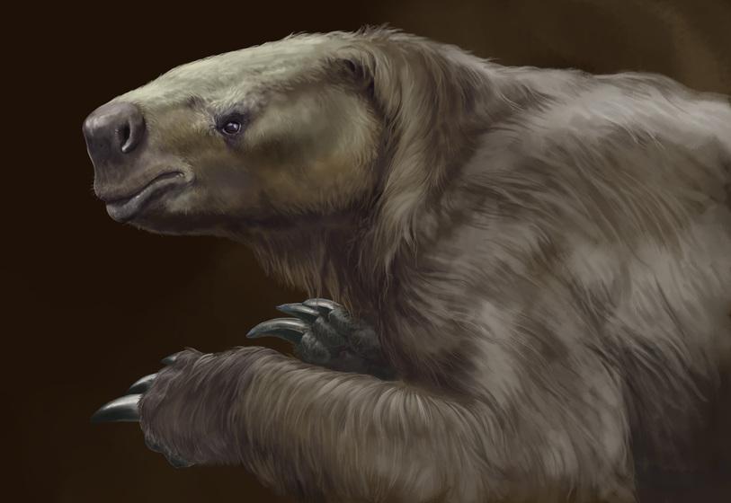 Los perezosos de la prehistoria no eran tan lentos como los actuales ...